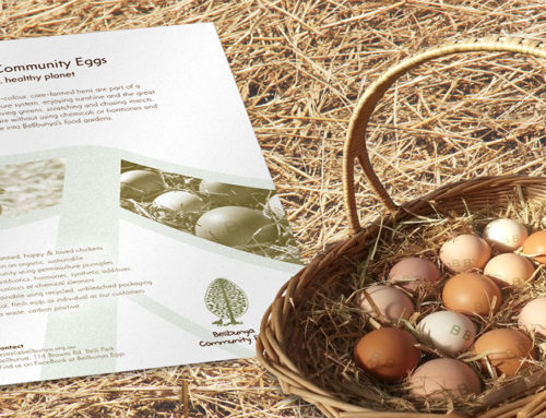 Bellbunya Community Eggs Flyer