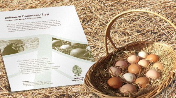 Bellbunya-Community-Eggs