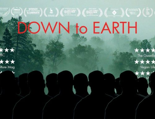 Down to Earth Screenings at the Labia